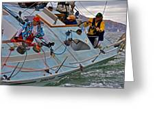 San Francisco Sailing Greeting Card