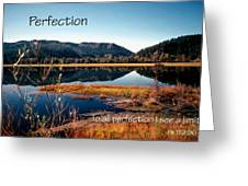 21042 Perfection 2 Greeting Card