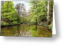 A Tranquil Forest Lake Greeting Card