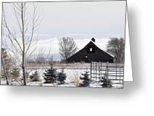 Idaho Falls Greeting Card