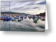 Lyme Regis Harbour Greeting Card