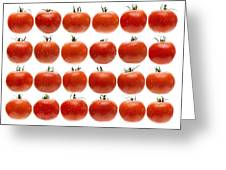 24 Tomatoes Greeting Card