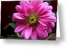 Loveflowers Greeting Card