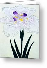 Japanese Flower Greeting Card