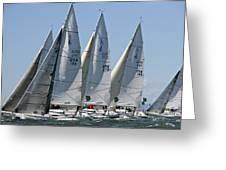 Sf Bay Sailing Greeting Card
