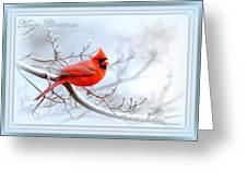 2559-1 Cardinal Greeting Card