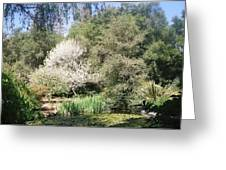 A Day In The Garden Greeting Card