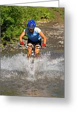 A Woman Mountain Bikes Along Trail 401 Greeting Card