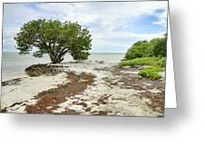 Anne's Beach-3 Greeting Card