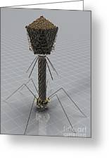 Bacteriophage Greeting Card