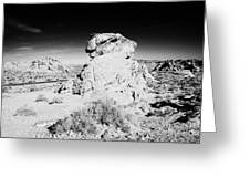 Beehives Sandstone Formations In Valley Of Fire State Park Nevada Usa Greeting Card