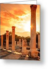 Beit She'an Greeting Card