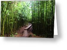 Boardwalk Passing Through Bamboo Trees Greeting Card