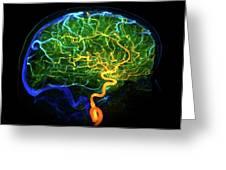 Brain Blood Vessels Greeting Card