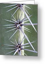 Cactus Thorns Greeting Card