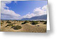 Caleta De Famara Beach On Lanzarote Greeting Card