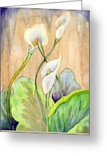 3 Calla Lilies Greeting Card