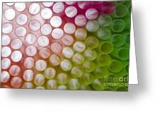 Colorful Straws Greeting Card