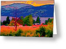 Cowichan Bay From Doman's Road Greeting Card