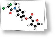 Diloxanide Furoate Amoebiasis Drug Greeting Card
