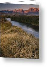 Eastern Sierras And Owens River Greeting Card