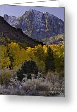 Eastern Sierras In Autumn Greeting Card