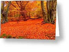 Epping Forest Hrd Version Greeting Card