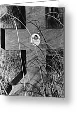 Film Noir Dana Andrews Linda Darnell Fallen Angel 1945 Child's Grave Ghost Town Golden Nm 1972 Greeting Card