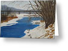 Geese On The Grand River Greeting Card