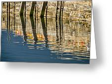 Harbour Reflections Greeting Card