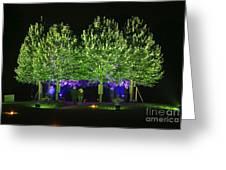 Illumina Light Show At Schloss Dyck Germany Greeting Card by David Davies