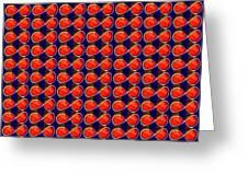 Infinity Infinite Symbol Elegant Art And Patterns Greeting Card by Navin Joshi
