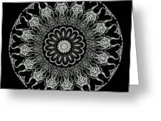 Kaleidoscope Ernst Haeckl Sea Life Series Black And White Set On Greeting Card