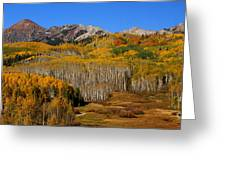 Kebler Color Show Greeting Card