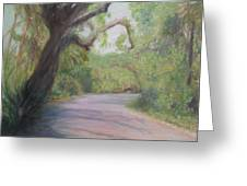 Kingsley Plantation Road Greeting Card