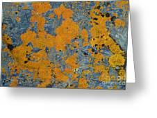 Lichened Rocks Greeting Card