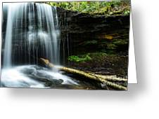 Lin Camp Branch Waterfall Greeting Card