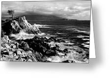 Lone Cypress On The Coast, Pebble Greeting Card