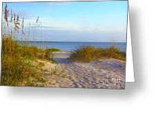 Longboat Key Beach Greeting Card