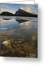 Mt. Rundle And Vermillion Lake Greeting Card