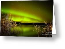 Northern Lights Mirrored On Lake Greeting Card