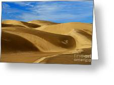 Oceano Sand Dunes Greeting Card