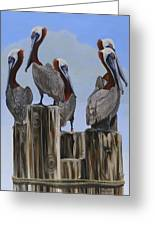 Pelicans Five Greeting Card
