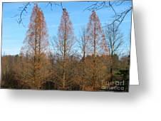 3 Pines Greeting Card