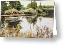 Placid Waters Greeting Card