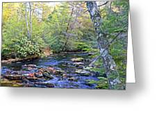 Pocono Mountain Stream Pennsylvania Greeting Card