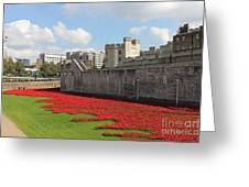 Remembrance Poppies At The Tower Of London Greeting Card