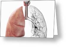Respiratory System Greeting Card