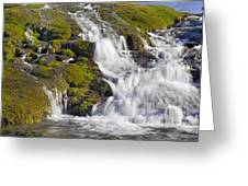 River San Juan  Greeting Card
