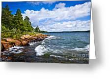 Rocky Shore Of Georgian Bay Greeting Card by Elena Elisseeva